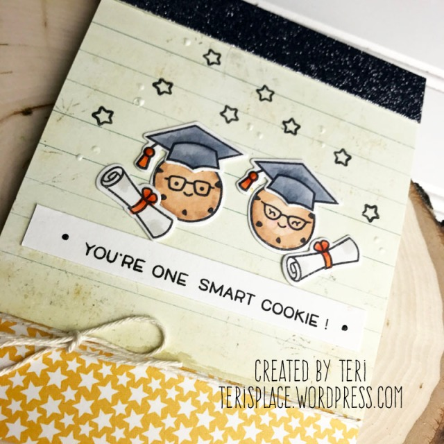 SmartCookie2-teri